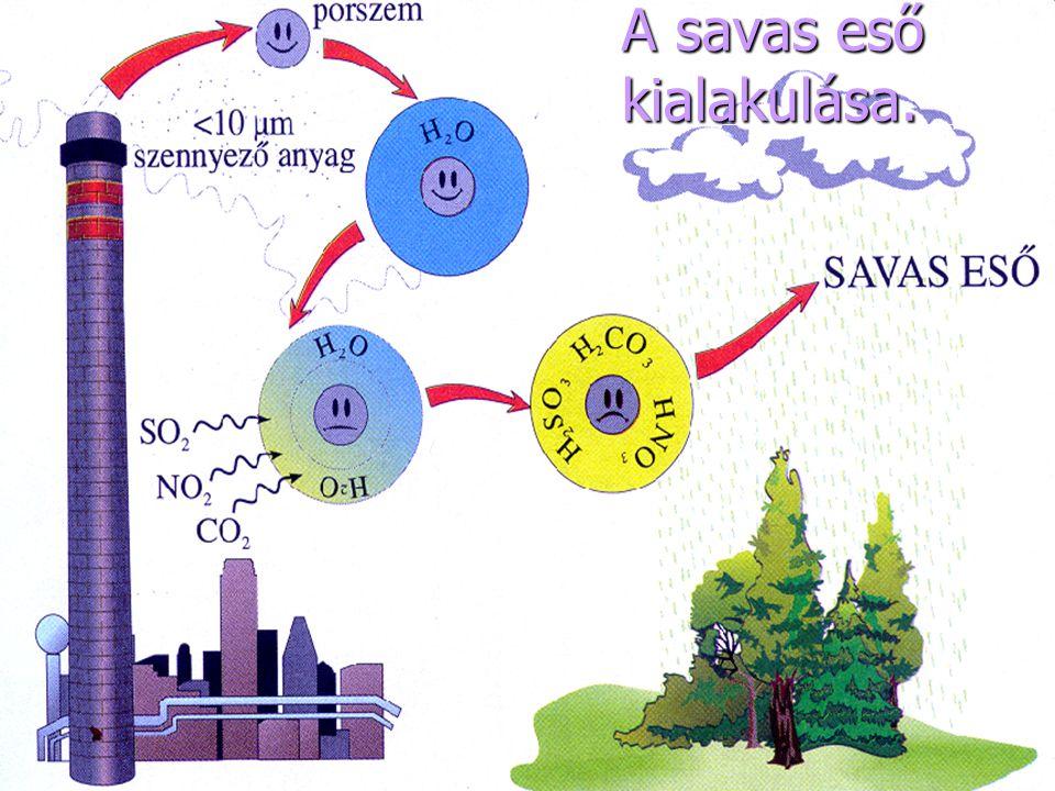 Ez itt egy erdőhalál.Oka a levegőszennyeződés,főként a savas eső.