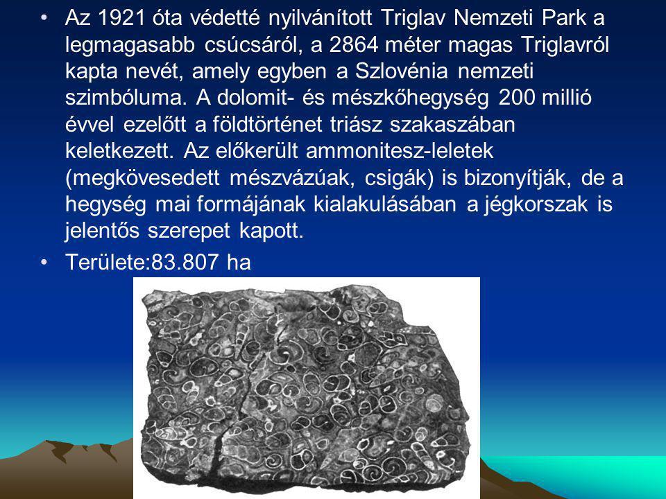 Az 1921 óta védetté nyilvánított Triglav Nemzeti Park a legmagasabb csúcsáról, a 2864 méter magas Triglavról kapta nevét, amely egyben a Szlovénia nem