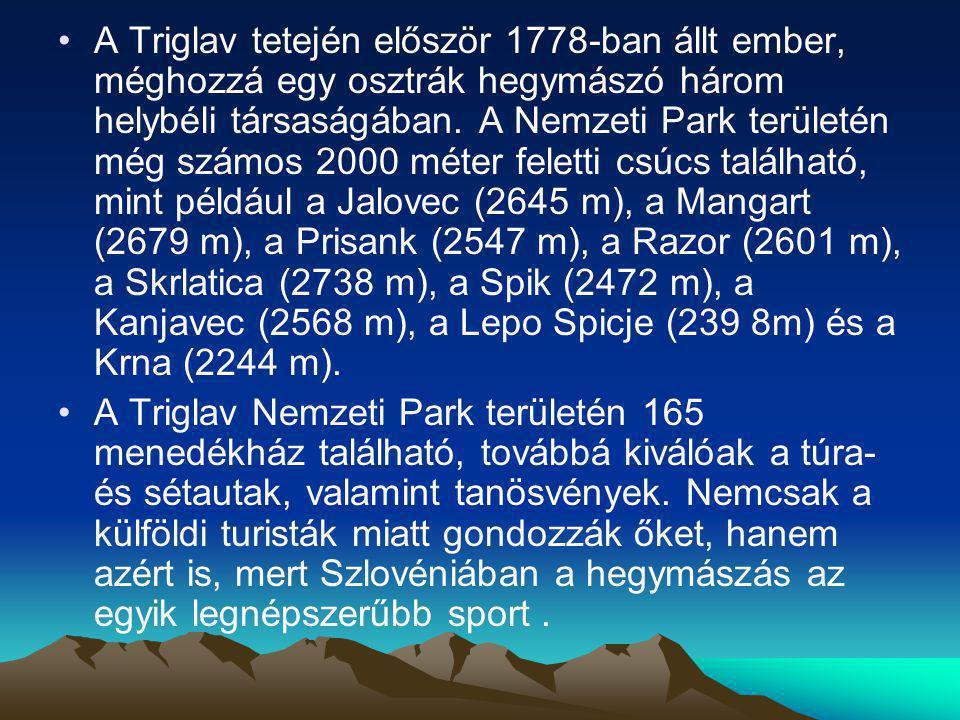 A Triglav tetején először 1778-ban állt ember, méghozzá egy osztrák hegymászó három helybéli társaságában. A Nemzeti Park területén még számos 2000 mé
