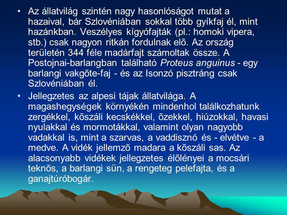 Az állatvilág szintén nagy hasonlóságot mutat a hazaival, bár Szlovéniában sokkal több gyíkfaj él, mint hazánkban. Veszélyes kígyófajták (pl.: homoki