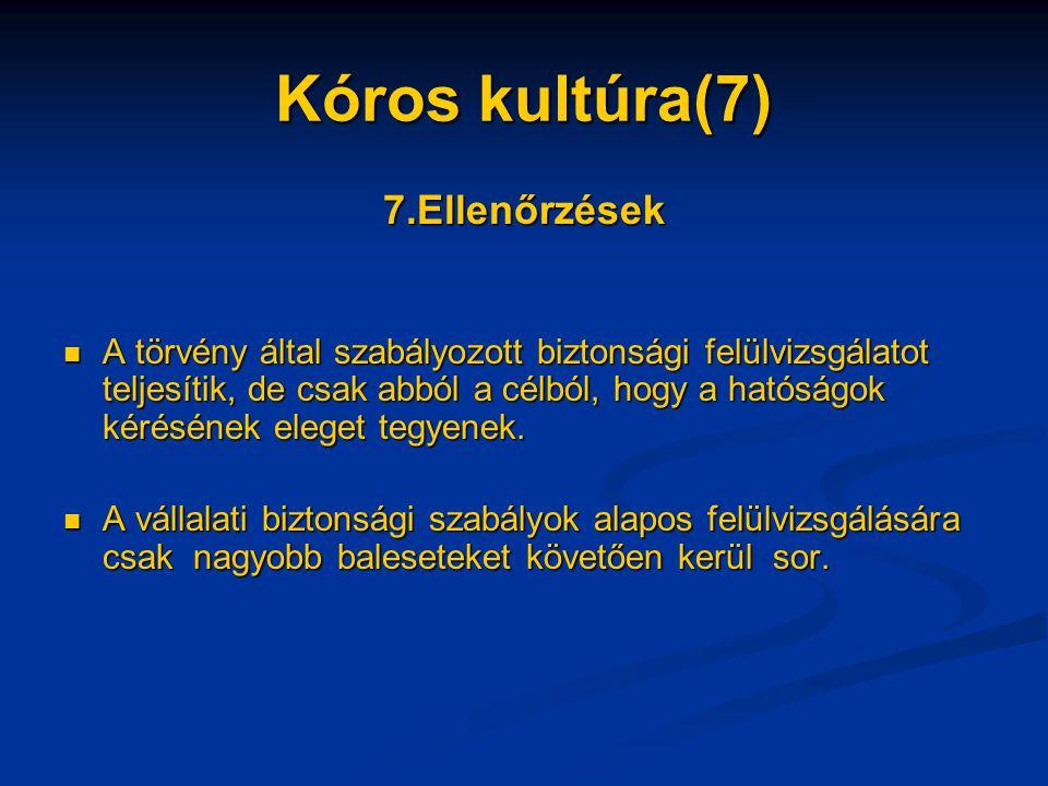 Kóros kultúra(7) 7.Ellenőrzések A törvény által szabályozott biztonsági felülvizsgálatot teljesítik, de csak abból a célból, hogy a hatóságok kérésének eleget tegyenek.