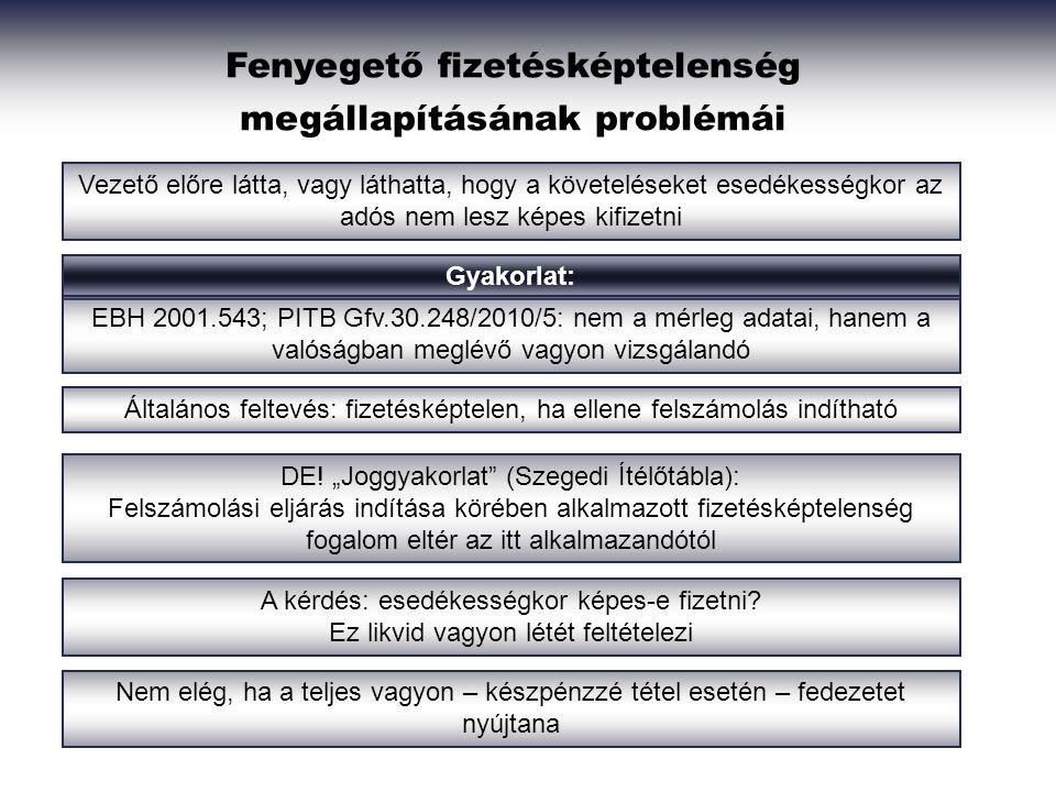 Fenyegető fizetésképtelenség megállapításának problémái Gyakorlat: Vezető előre látta, vagy láthatta, hogy a követeléseket esedékességkor az adós nem lesz képes kifizetni EBH 2001.543; PITB Gfv.30.248/2010/5: nem a mérleg adatai, hanem a valóságban meglévő vagyon vizsgálandó Általános feltevés: fizetésképtelen, ha ellene felszámolás indítható DE.