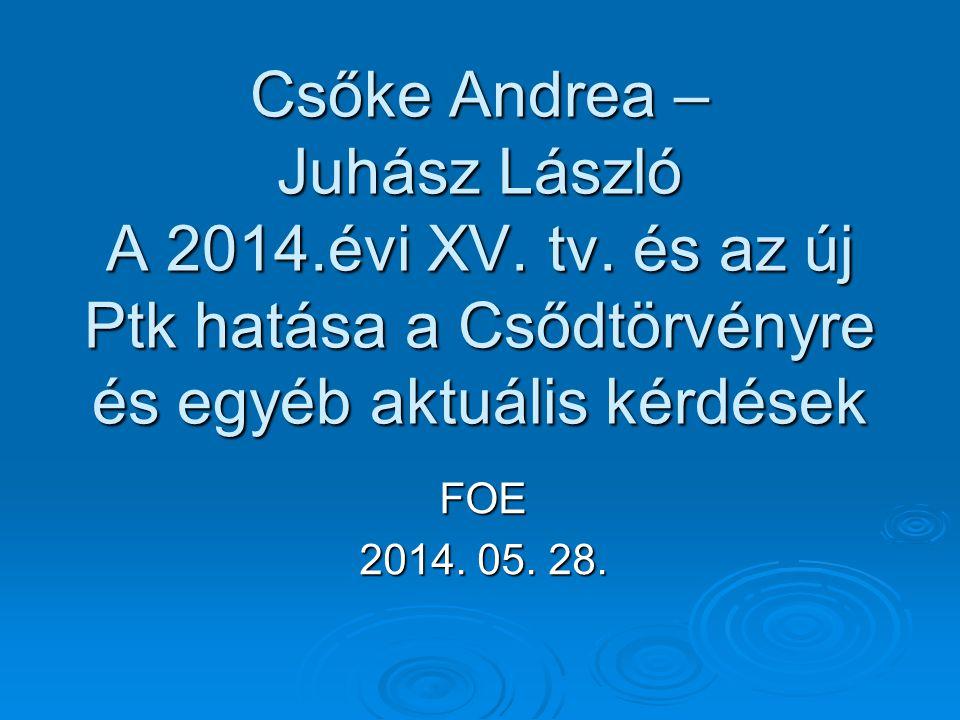 Felszámolási kérdések   Gfv.VII.30.158/2013/7.