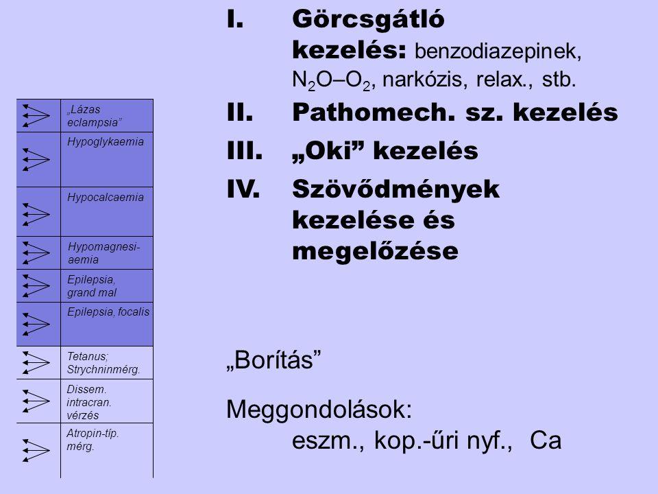légutak. légzés. carotis-pulzus. Akut agyi anoxia (MAS) t-clszimm.elvésznorm.újsz., kisgyer m.