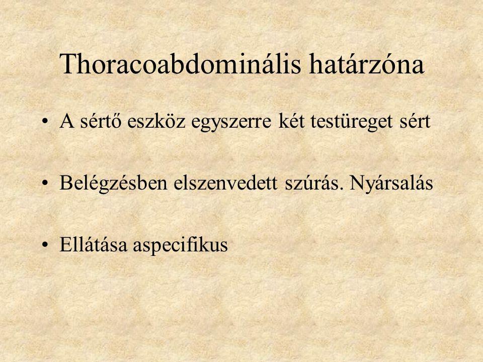 Thoracoabdominális határzóna A sértő eszköz egyszerre két testüreget sért Belégzésben elszenvedett szúrás.