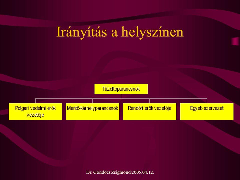 Dr. Göndöcs Zsigmond 2005.04.12. Irányítás a helyszínen