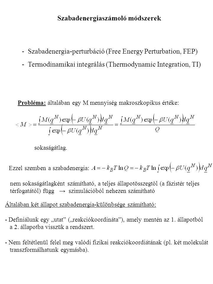 - Szabadenergia-perturbáció (Free Energy Perturbation, FEP) - Termodinamikai integrálás (Thermodynamic Integration, TI) Szabadenergiaszámoló módszerek