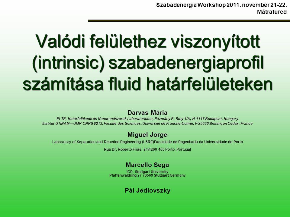 Valódi felülethez viszonyított (intrinsic) szabadenergiaprofil számítása fluid határfelületeken Darvas Mária ELTE, Határfelületek és Nanorendszerek Laboratóriuma, Pázmány P.