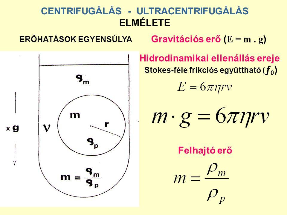 CENTRIFUGÁLÁS - ULTRACENTRIFUGÁLÁS ELMÉLETE ERŐHATÁSOK EGYENSÚLYA Gravitációs erő ( E = m. g ) Hidrodinamikai ellenállás ereje Stokes-féle frikciós eg