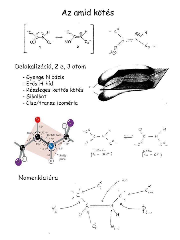Az amid kötés Delokalizáció, 2 e, 3 atom - Gyenge N bázis - Erős H-híd - Részleges kettős kötés - Síkalkat - Cisz/transz izoméria Nomenklatúra