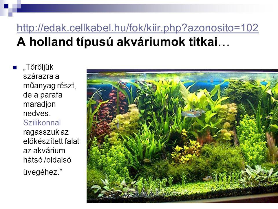 """http://edak.cellkabel.hu/fok/kiir.php?azonosito=102 http://edak.cellkabel.hu/fok/kiir.php?azonosito=102 A holland típusú akváriumok titkai… """"Töröljük"""