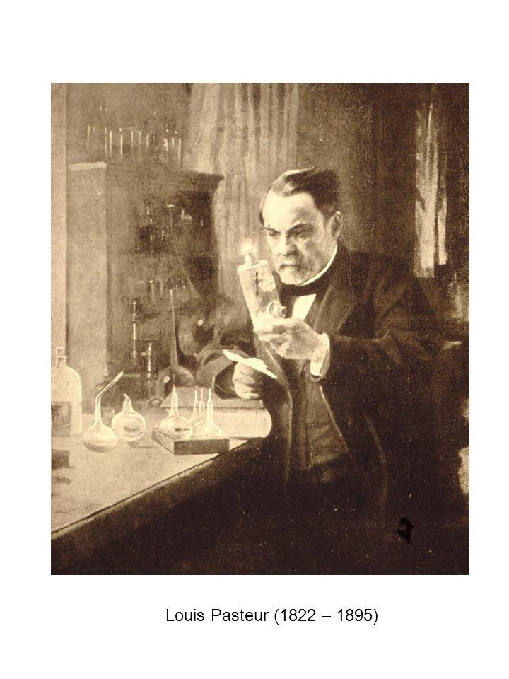 1832 GyökelméletJ.Liebig, F. Wöhler benzoil gyök (radikale, lat.