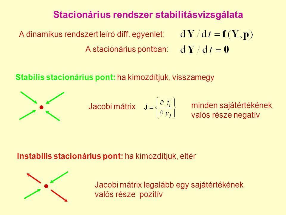 Stacionárius rendszer stabilitásvizsgálata Stabilis stacionárius pont: ha kimozdítjuk, visszamegy A dinamikus rendszert leíró diff.