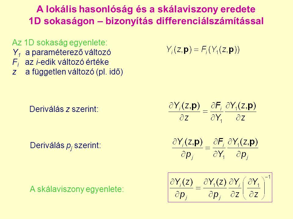 A lokális hasonlóság és a skálaviszony eredete 1D sokaságon – bizonyítás differenciálszámítással Az 1D sokaság egyenlete: Y 1 a paraméterező változó F i az i-edik változó értéke z a független változó (pl.