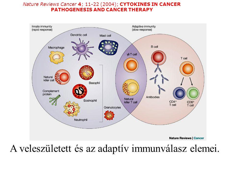 Nature Reviews Cancer 4; 11-22 (2004); CYTOKINES IN CANCER PATHOGENESIS AND CANCER THERAPY A veleszületett és az adaptív immunválasz elemei.