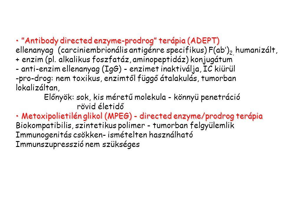 """Antibody directed enzyme-prodrog"" terápia (ADEPT)""Antibody directed enzyme-prodrog"" terápia (ADEPT) ellenanyag (carciniembrionális antigénre specifik"