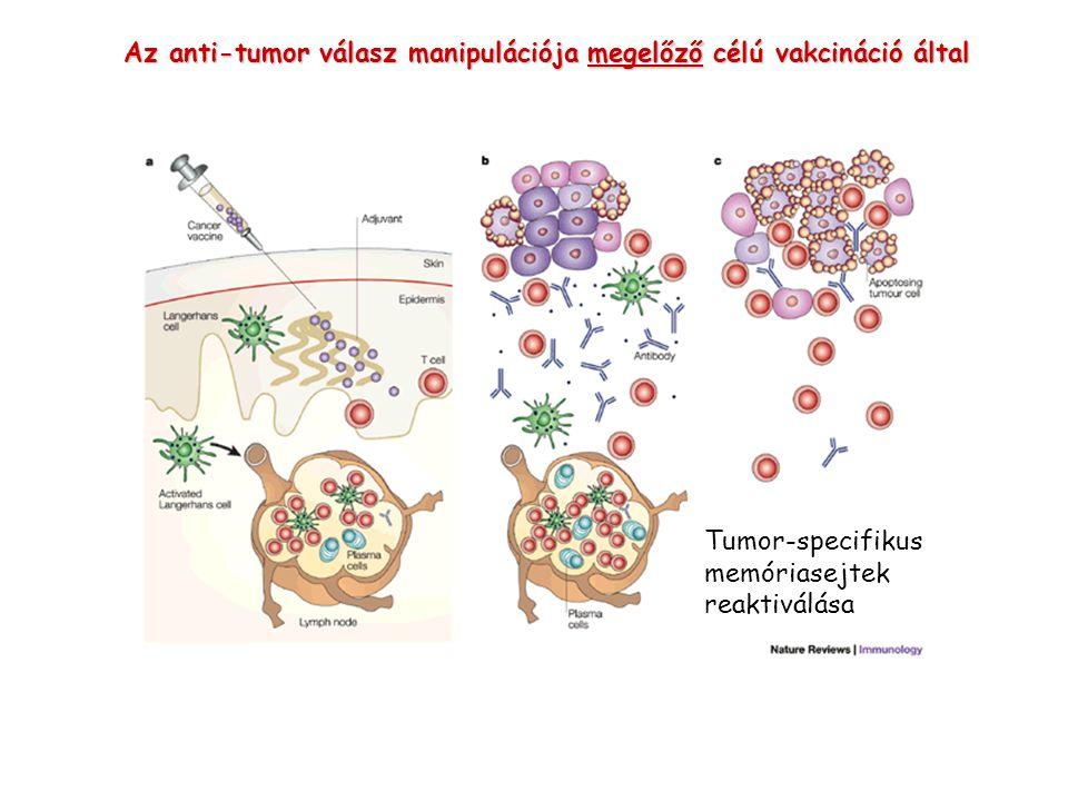 Az anti-tumor válasz manipulációja megelőző célú vakcináció által Tumor-specifikus memóriasejtek reaktiválása