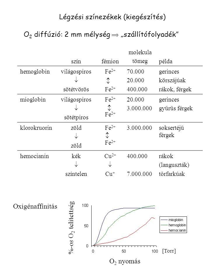 """Légzési színezékek (kiegészítés) O 2 diffúzió: 2 mm mélység  """"szállítófolyadék"""" színfémion molekula tömegpélda hemoglobin világospiros  sötétvörös F"""