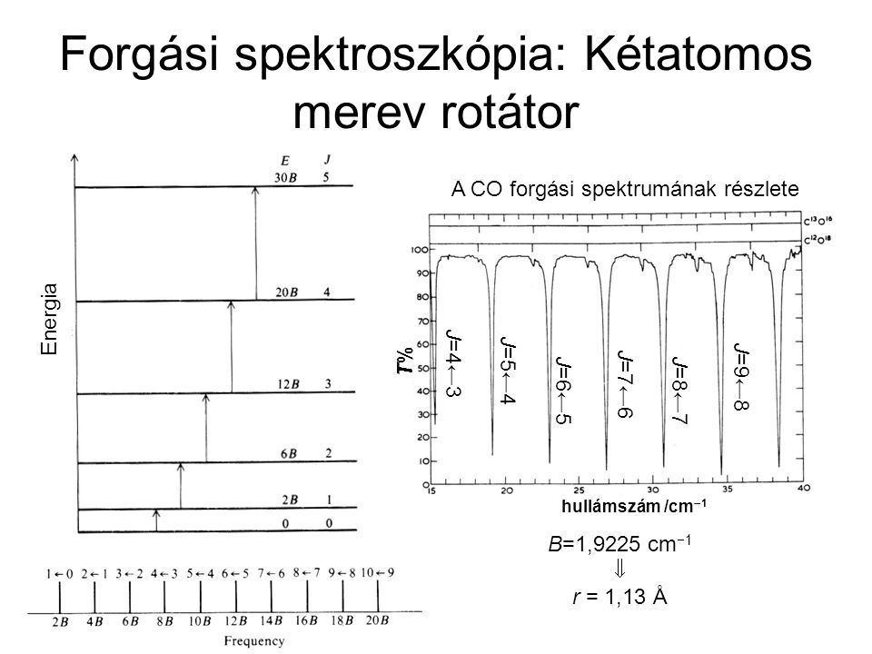 Forgási spektroszkópia: Kétatomos merev rotátor Energia B=1,9225 cm  1  r = 1,13 Å A CO forgási spektrumának részlete hullámszám /cm  1 T%T% J=9←8