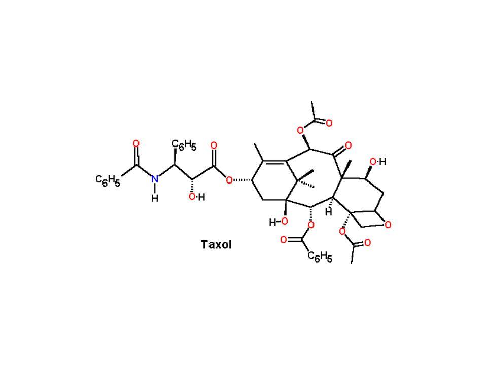 N N CH 3 O H OCOCH 3 COOCH 3 H OH N H N OH CH 3 OOC CH 3 16 Antimitotikus vegyületek: vinca alkaloidok Catharantus roseus vindolincatharantin vincristinvinblasztin