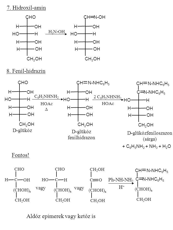 7. Hidroxil-amin OH CHO OH CH 2 OH HO OH H H H H H 2 N-OH OH CH 2 OH HO OH H H H H CH N-OH 8. Fenil-hidrazin OH CHO OH CH 2 OH HO OH H H H H C 6 H 5 N