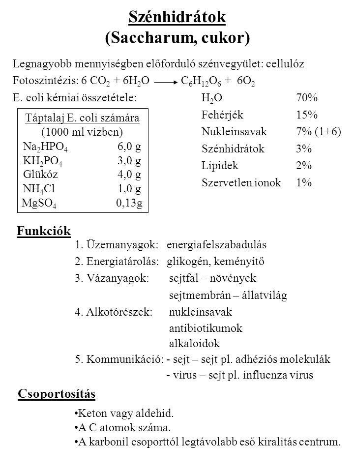 Szénhidrátok (Saccharum, cukor) Legnagyobb mennyiségben előforduló szénvegyület: cellulóz Fotoszintézis: 6 CO 2 + 6H 2 O C 6 H 12 O 6 + 6O 2 E. coli k