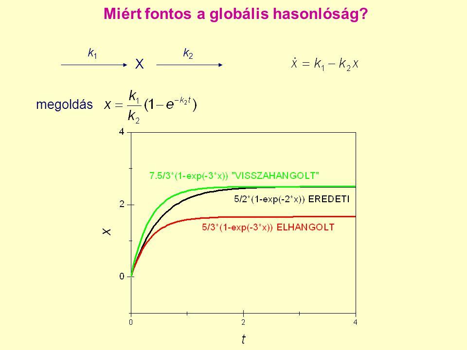 Miért fontos a globális hasonlóság? X k1k1 k2k2 megoldás