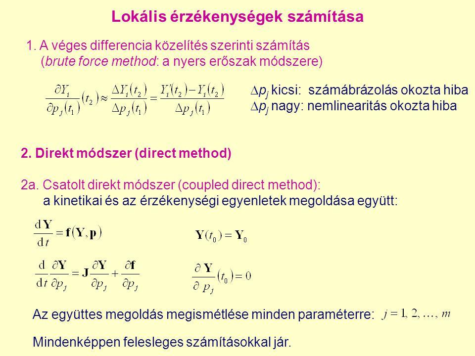 Az együttes megoldás megismétlése minden paraméterre: 1. A véges differencia közelítés szerinti számítás (brute force method: a nyers erőszak módszere