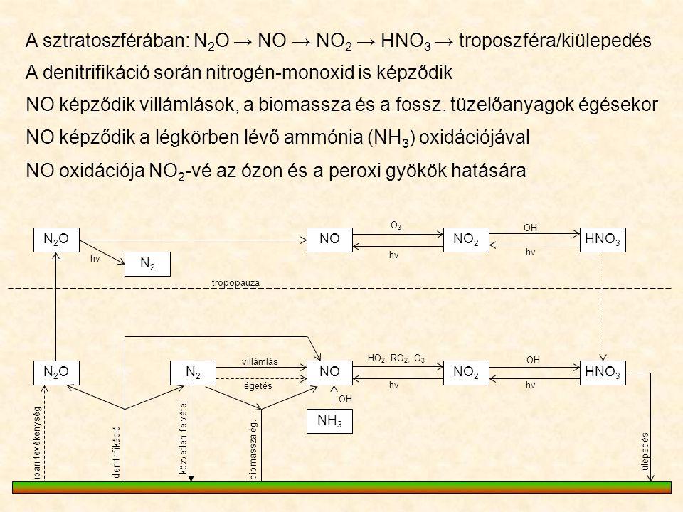 A sztratoszférában: N 2 O → NO → NO 2 → HNO 3 → troposzféra/kiülepedés N2ON2ONONO 2 NON2ON2ON2N2 NH 3 N2N2 O3O3 hνhν hνhν HNO 3 OH villámlás égetés HO