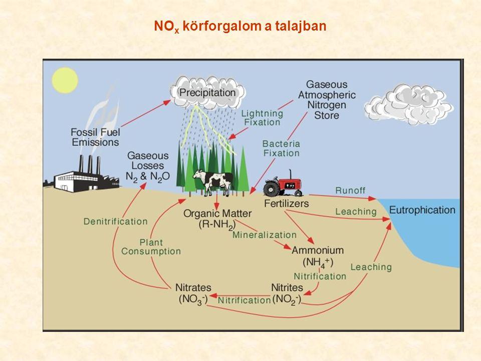 NO x fontos szerepet játszik az ózonképződésben, áttételesen a csapadékképződésben is (→ HNO 3 → kondenzációs magok) Iparilag fejlett országokban: közlekedés40-50% energia termelés30-40% ipari folyamatok ~20%