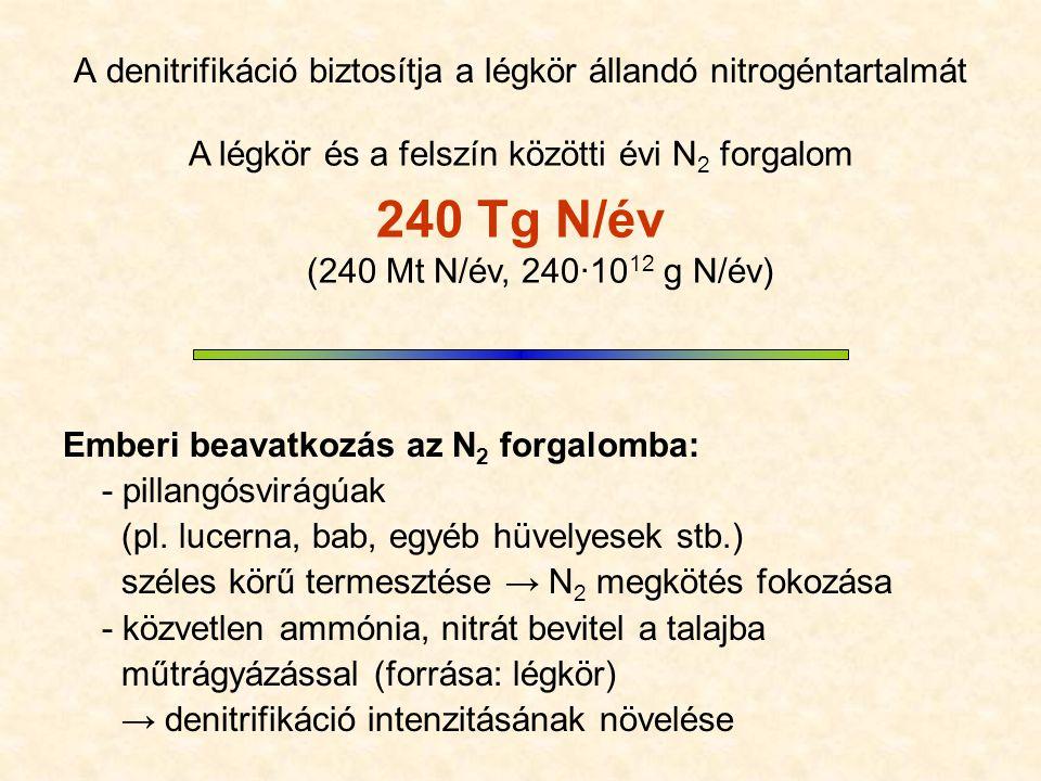 NO 2 Budapesten 2005 http://www.kvvm.hu/olm/