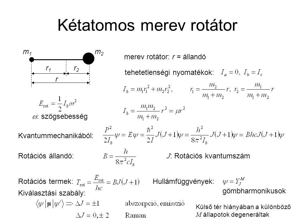 Kétatomos merev rotátor r1r1 r2r2 r m1m1 m2m2 merev rotátor: r = állandó tehetetlenségi nyomatékok:  : szögsebesség Kvantummechanikából: Rotációs áll
