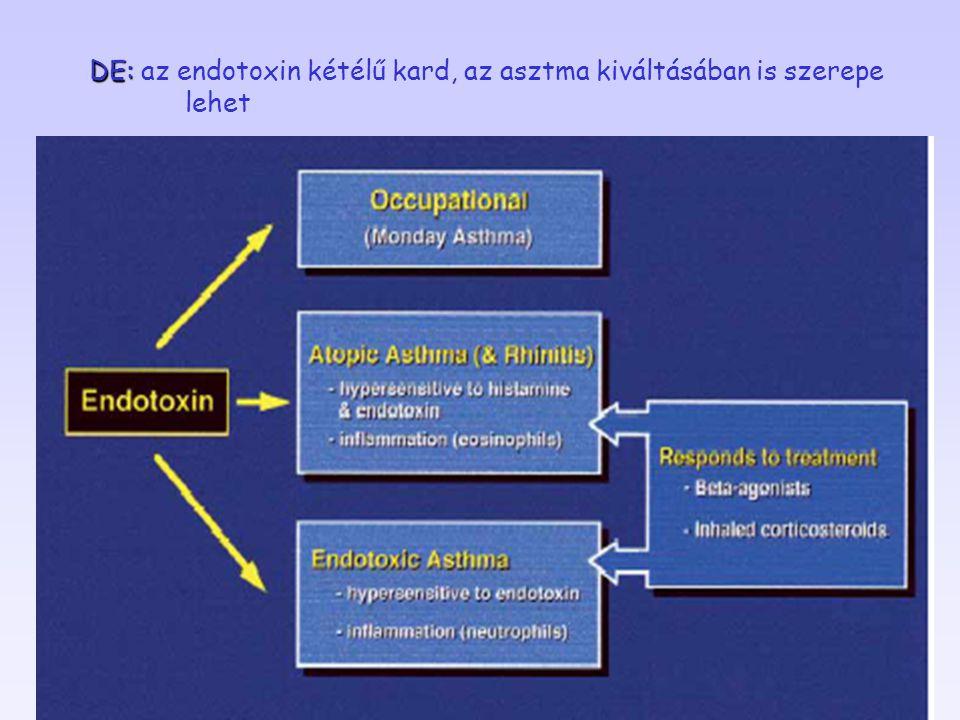 DE: DE: az endotoxin kétélű kard, az asztma kiváltásában is szerepe lehet