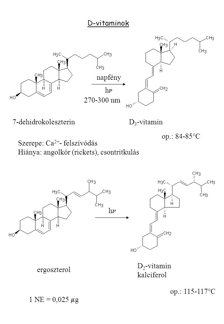 D-vitaminok napfény h 7-dehidrokoleszterin D 3 -vitamin op.: 84-85°C Szerepe: Ca 2+ - felszívódás Hiánya: angolkór (rickets), csontritkulás h ergoszte