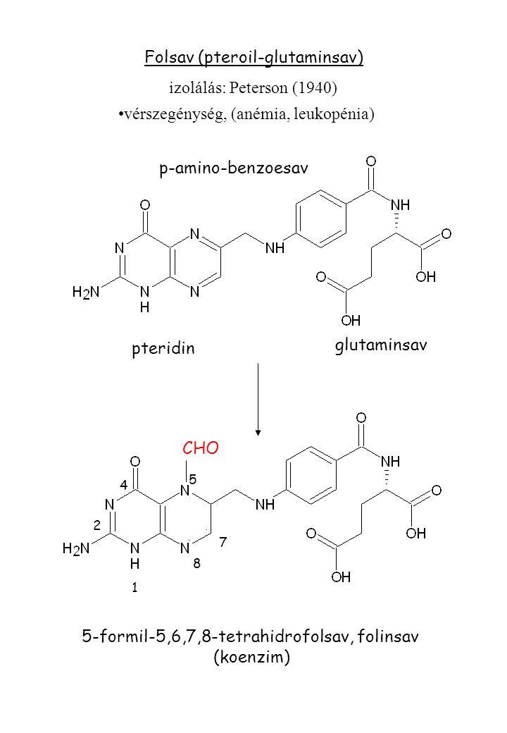 Folsav (pteroil-glutaminsav) izolálás: Peterson (1940) pteridin p-amino-benzoesav glutaminsav 5-formil-5,6,7,8-tetrahidrofolsav, folinsav (koenzim) vérszegénység, (anémia, leukopénia) 4 2 8 5 1 7 CHO