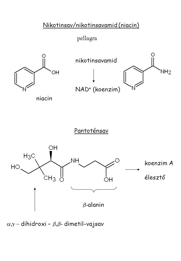 Nikotinsav/nikotinsavamid (niacin) pellagra nikotinsavamid NAD + (koenzim) Pantoténsav  - alanin koenzim A élesztő niacin  dihidroxi –  - dimetil-vajsav