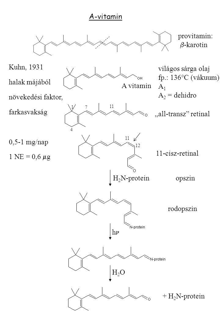 """A-vitamin provitamin:  -karotin A vitamin világos sárga olaj fp.: 136°C (vákuum) A 1 A 2 = dehidro """"all-transz retinal 4 1 7 11 12 11 11-cisz-retinal opszin rodopszin H2OH2O h H 2 N-protein Kuhn, 1931 halak májából növekedési faktor, farkasvakság 0,5-1 mg/nap 1 NE = 0,6  g + H 2 N-protein"""