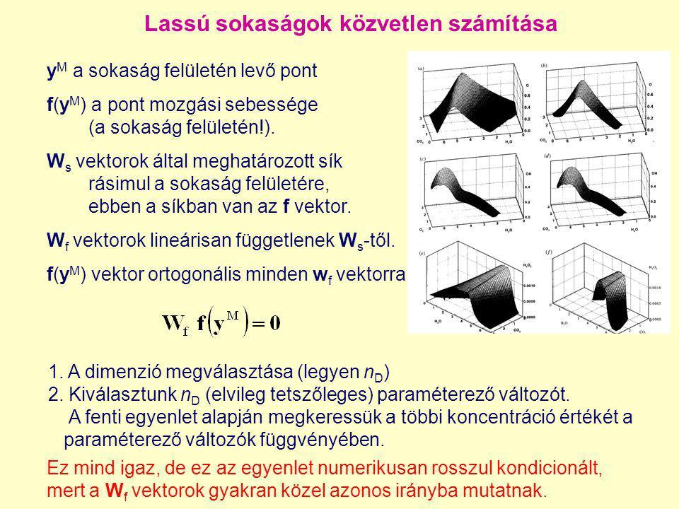 Lassú sokaságok közvetlen számítása y M a sokaság felületén levő pont f(y M ) a pont mozgási sebessége (a sokaság felületén!). W s vektorok által megh