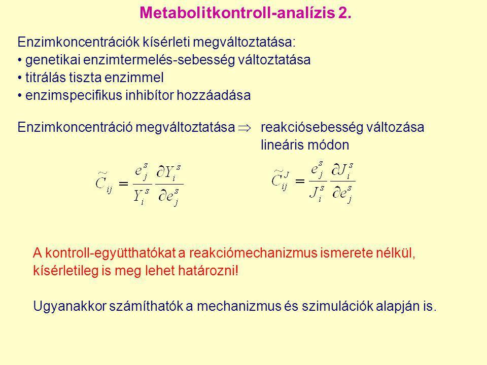 Metabolitkontroll-analízis 2. Enzimkoncentrációk kísérleti megváltoztatása: genetikai enzimtermelés-sebesség változtatása titrálás tiszta enzimmel enz