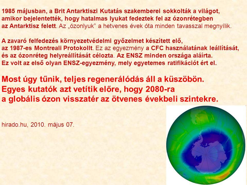 1985 májusban, a Brit Antarktiszi Kutatás szakemberei sokkolták a világot, amikor bejelentették, hogy hatalmas lyukat fedeztek fel az ózonrétegben az Antarktisz felett.