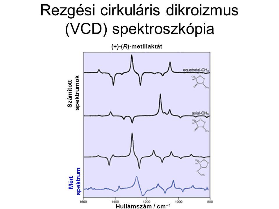 Rezgési cirkuláris dikroizmus (VCD) spektroszkópia Hullámszám / cm  1 Számított spektrumok Mért spektrum (+)-(R)-metillaktát