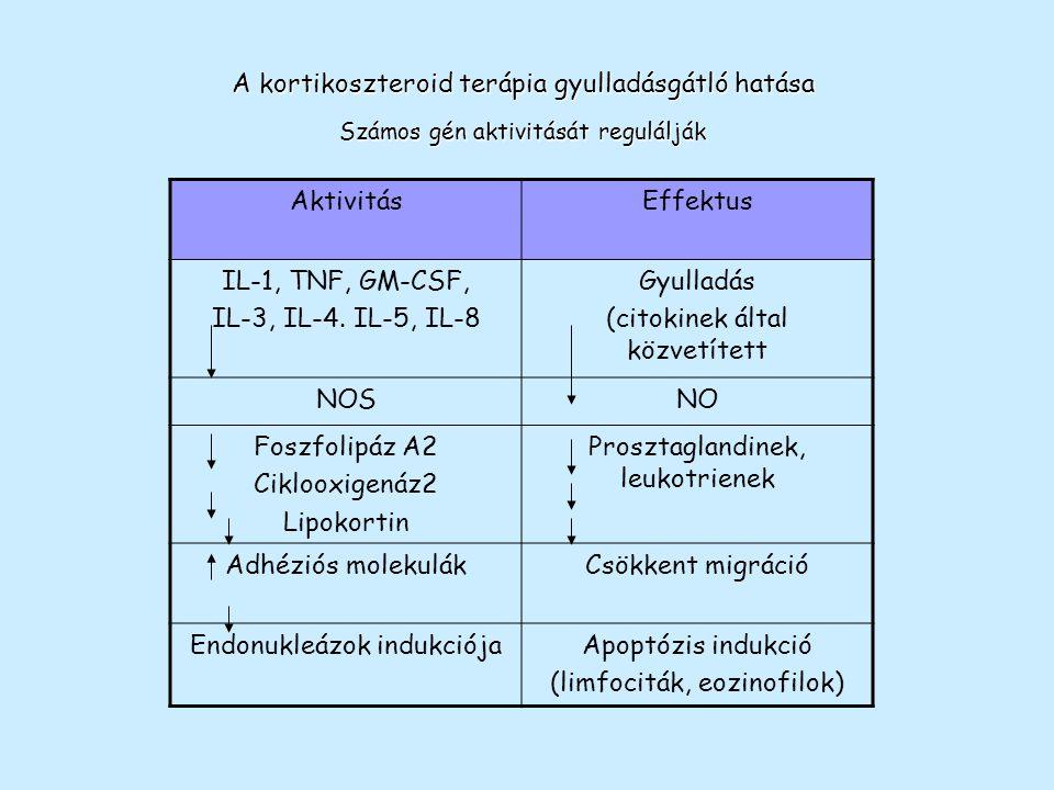 Kortikoszteroidok immunszuppresszív hatásának mechanizmusa Megnövekedett transzkripció és fehérjeszintézis NF-  B IBIB Citokin gén transzkripci ó X kortikoszteroidok I  B  gén