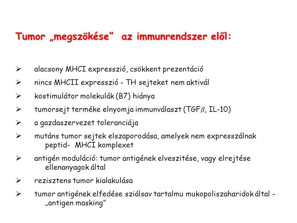 """Tumor """"megszökése az immunrendszer elől:  · alacsony MHCI expresszió, csökkent prezentáció  · nincs MHCII expresszió - TH sejteket nem aktivál  · kostimulátor molekulák (B7) hiánya  · tumorsejt terméke elnyomja immunválaszt (TGF , IL-10)  · a gazdaszervezet toleranciája  · mutáns tumor sejtek elszaporodása, amelyek nem expresszálnak peptid-MHCI komplexet  · antigén moduláció: tumor antigének elveszitése, vagy elrejtése ellenanyagok által  · rezisztens tumor kialakulása  · tumor antigének elfedése sziálsav tartalmu mukopoliszaharidok által - """"antigen masking"""