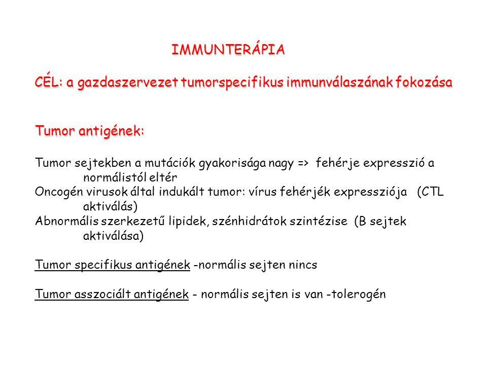 IMMUNTERÁPIA CÉL: a gazdaszervezet tumorspecifikus immunválaszának fokozása Tumor antigének: Tumor sejtekben a mutációk gyakorisága nagy => fehérje expresszió a normálistól eltér Oncogén virusok által indukált tumor: vírus fehérjék expressziója (CTL aktiválás) Abnormális szerkezetű lipidek, szénhidrátok szintézise (B sejtek aktiválása) Tumor specifikus antigének -normális sejten nincs Tumor asszociált antigének - normális sejten is van -tolerogén