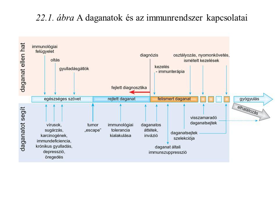 22.1. ábra A daganatok és az immunrendszer kapcsolatai