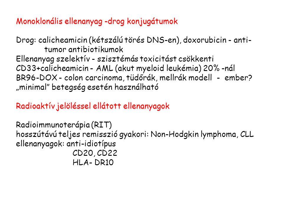 Monoklonális ellenanyag -drog konjugátumok Drog: calicheamicin (kétszálú törés DNS-en), doxorubicin - anti- tumor antibiotikumok Ellenanyag szelektív - szisztémás toxicitást csökkenti CD33+calicheamicin - AML (akut myeloid leukémia) 20% -nál BR96-DOX - colon carcinoma, tüdőrák, mellrák modell - ember.