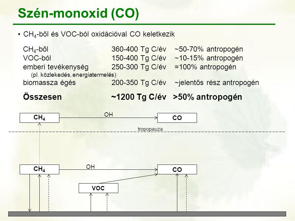 CH 4 tropopauza VOC OH CO OH CO Szén-monoxid (CO) CH 4 -ből és VOC-ból oxidációval CO keletkezik CH 4 -ből360-400 Tg C/év ~50-70% antropogén VOC-ból15