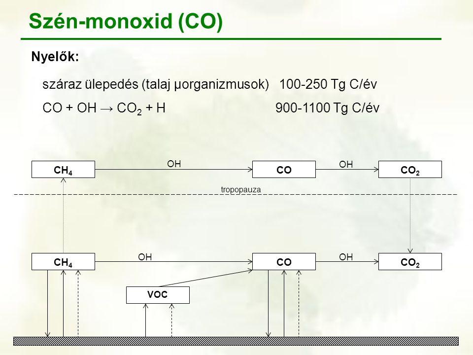 CH 4 OH tropopauza VOC CO OH CO 2 OH CO Szén-monoxid (CO) Nyelők: száraz ülepedés (talaj μorganizmusok)100-250 Tg C/év CO + OH → CO 2 + H 900-1100 Tg