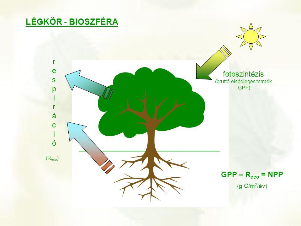 LÉGKÖR - BIOSZFÉRA fotoszintézis (bruttó elsődleges termék GPP) respirációrespiráció (R eco ) GPP – R eco = NPP (g C/m 2 /év)