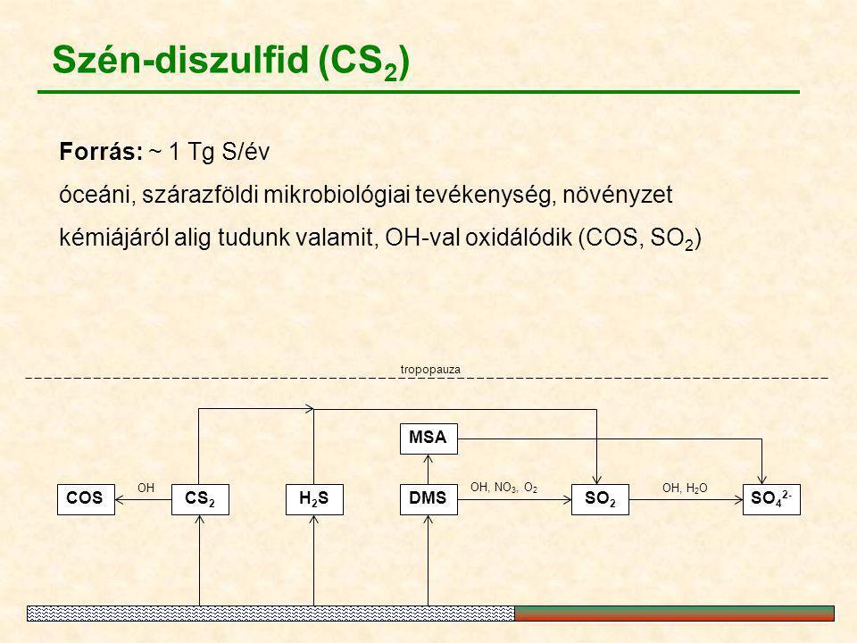 MSA SO 2 DMS OH, NO 3, O 2 OH, H 2 O tropopauza COS OH H2SH2S CS 2 SO 4 2- Szén-diszulfid (CS 2 ) Forrás: ~ 1 Tg S/év óceáni, szárazföldi mikrobiológi